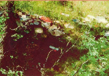 We will occasionally see this type of indirect evidence on home, cottage, and commercial, inspections in the Orillia, Gravenhurst, Bracebridge, Dorset, Parry Sound, and throughout Muskoka area. Small accumulations  of trash dumped at the back or sides of the property. Trash is usually half hidden in the bushes or pushed partway down a slope as it is here.